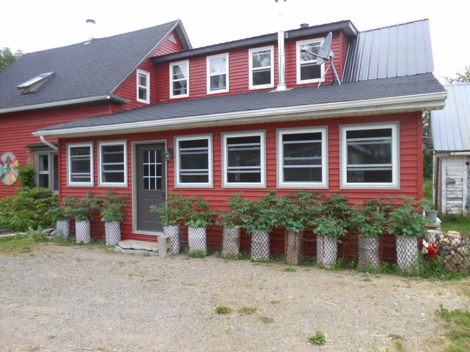Ferme fruits et légumes bio Groovy Little Garden Shed