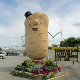 Marché de fruits et légumes alimentation Harvey's Big Potato
