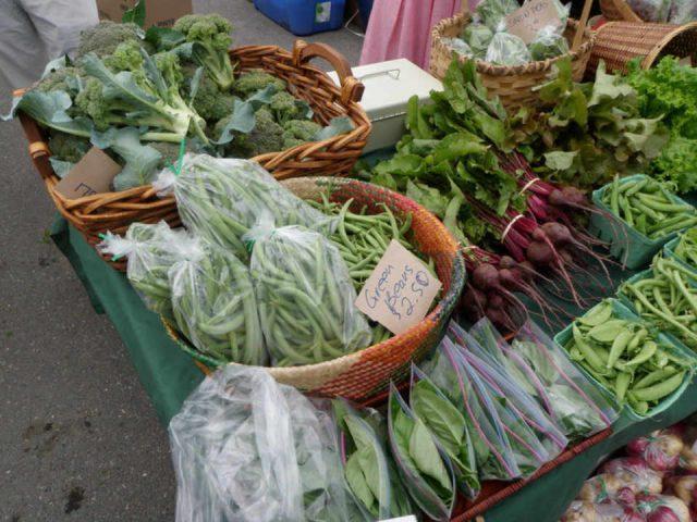 Marché de fruits et légumes biologiques vente de viandes Jemseg River Farm Jemseg NB Canada Ulocal produit local achat local produit terroir