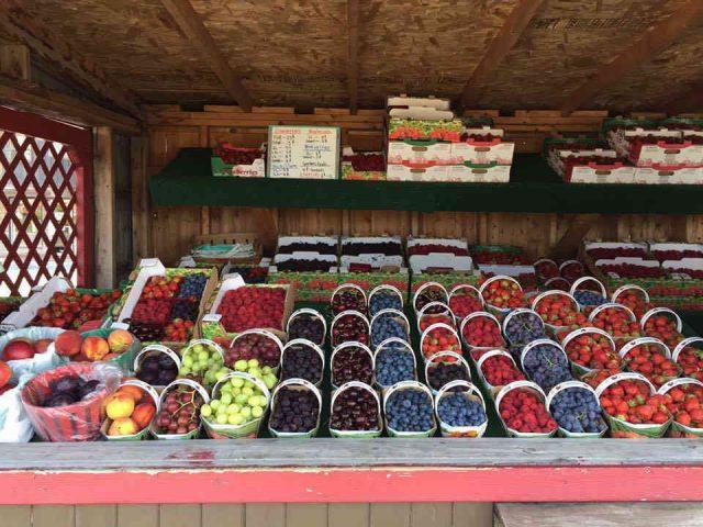 Marché de fruits et légumes paniers de petits fruits Les Jardins Lamoureux Hawkesbury Ontario Canada Ulocal produit local achat local