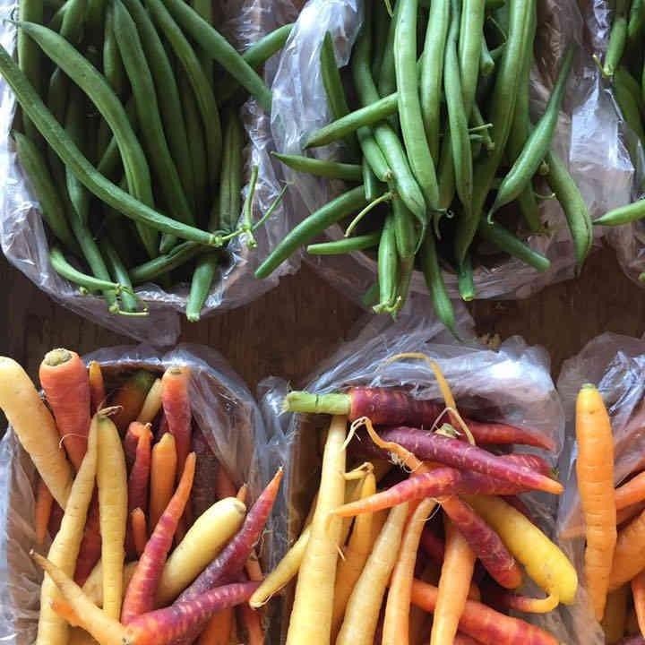 Marché de fruits et légumes carottes haricots verts Les Jardins Lamoureux Hawkesbury Ontario Canada Ulocal produit local achat local