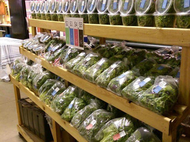 Légumes alimentation écologiques Local by Atta Moncton Nouveau-Brunswick Ulocal produit local achat local