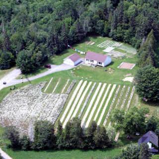 Autocueillette de bleuets légumes Oak Lane Farm Oak Point Nouveau-Brunswick Ulocal produit local achat local