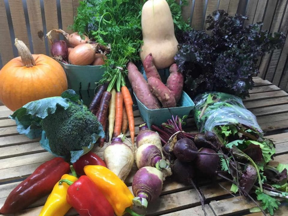 Fermier de famile panier ASC Roots Down Organic Farm Gananoque Ontario Canada Ulocal produit local achat local