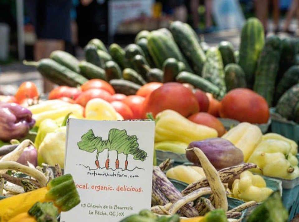 Fermier de famille kiosque légumes Roots and Shoots Farm Alcove Québec Canada Ulocal produit local achat local
