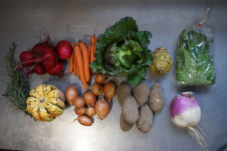 Fermier de famille panier ASC Roots and Shoots Farm Alcove Québec Canada Ulocal produit local achat local