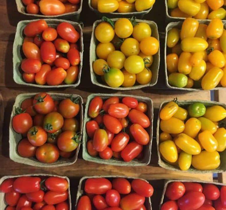 Marché de fruits et légumes tomates Tincap Berry Farm Brockville Ontario Canada Ulocal produit local achat local