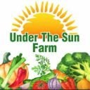 Produce Market logo Under The Sun Farm North Dighton Massachusetts United States Ulocal Local Product Local Purchase