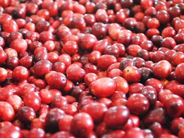Produce Market cranberries Upper Canada Cranberries Osgoode Ontario Canada Ulocal Local Product Local Purchase