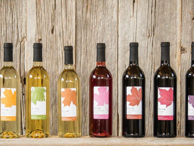 Vineyard bottles of wine Vineyard Clos du Vully Navan Ontario Canada Ulocal local product local purchase