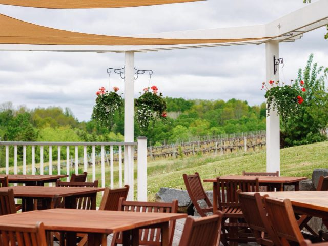 vineyard restaurant terrace table field view avondale sky winery and restaurant Newport nova scotia canada ulocal local products local purchase local produce locavore tourist