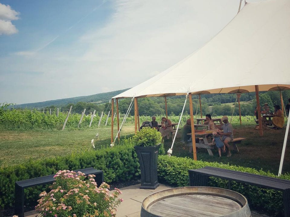 vineyard people tent tastings wine benjamin bridge windsor nova scotia canada ulocal local products local purchase local produce locavore tourist