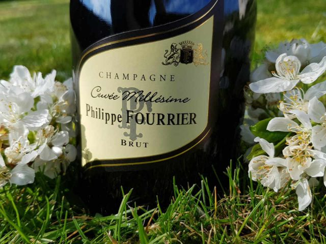 Vineyard alcohol Champagne Philippe Fournier Baroville France Ulocal local product local purchase local product