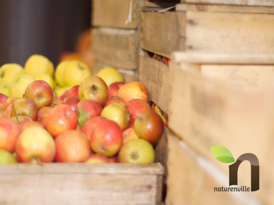 Marché de fruits et légumes biologiques Naturenville Paris Île-de-France Ulocal produit local achat local produit du terroir