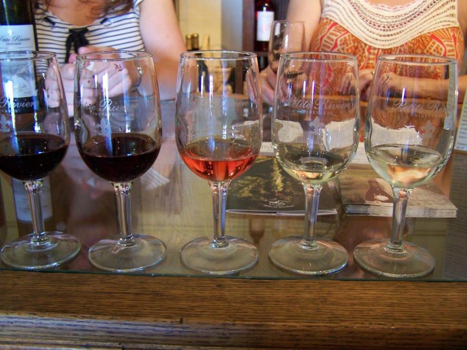 vignoble jardin terrasse dégustation inspiration française raisins rouges cépage vins spécialisé vin blanc vin rosé petite rivière vineyards crousetown nouvelle-écosse canada ulocal produits locaux achat local produits du terroir locavore touriste