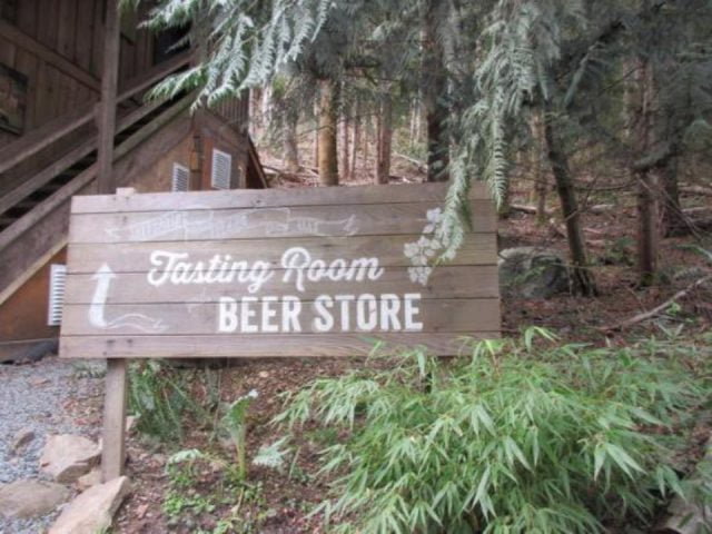 microbreweries path stairs forest trees nature tasting room salt spring island ales salt spring island british columbia canada ulocal local products local purchase local produce locavore tourist