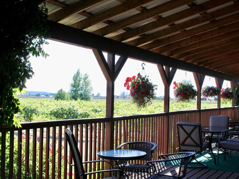 vineyard beautiful terrace with vineyard views vinoscenti vineyards surrey british colombia canada ulocal local products local purchase local produce locavore tourist