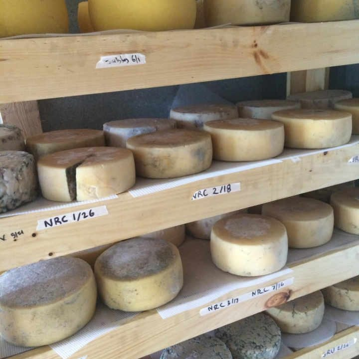 Fromagerie fromage Karim Farm & Dairy Ryegate Vermont États-Unis Ulocal produit local achat local