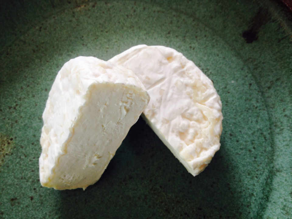Fromagerie fromage de chèvre Sage Farm Goat Dairy Stowe Vermont Ulocal produit local achat local