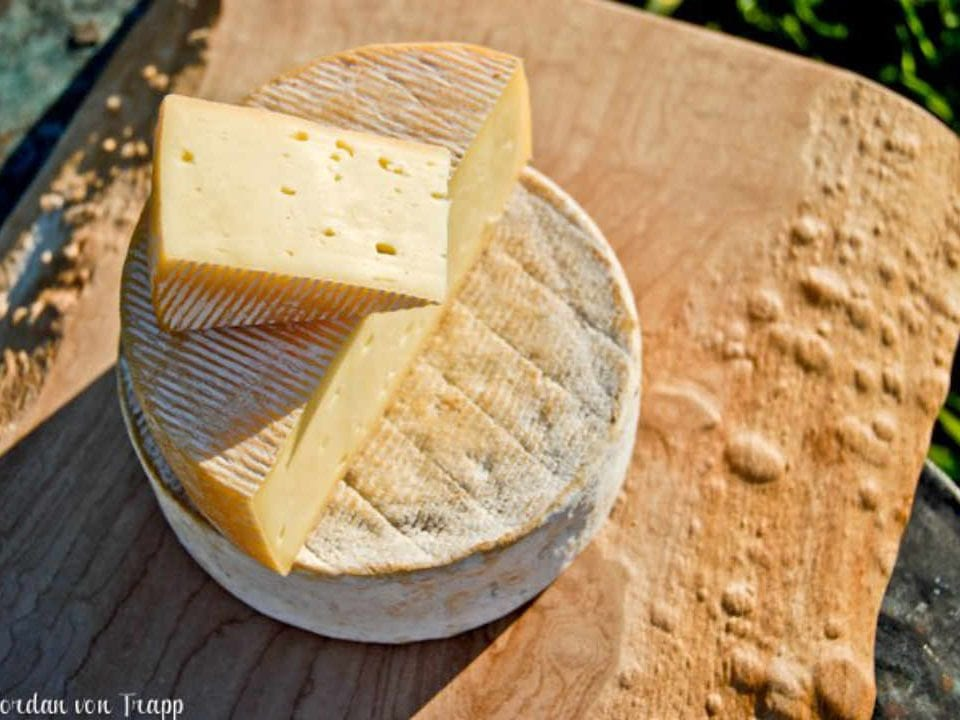 Cheese factory Cheese Von Trapp Farmstead Waitsfield Vermont United States Ulocal local product local purchase