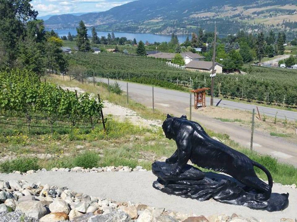 vignoble statue d'un tigre noir dans le vignoble et le vilage et lac en bas blind tiger vineyards lake country colombie britannique canada ulocal produits locaux achat local produits du terroir locavore touriste