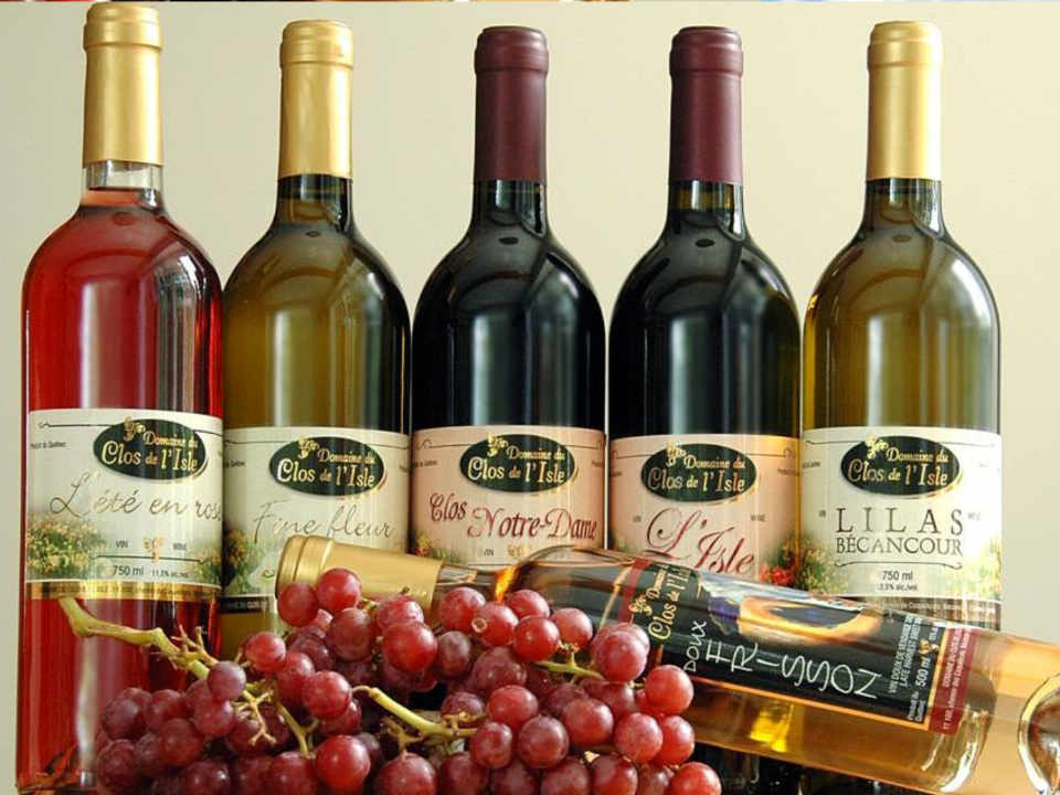 Vignoble alcool alimentation Domaine du Clos de l'Isle Bécancour Québec Ulocal produit local achat local produit du terroir
