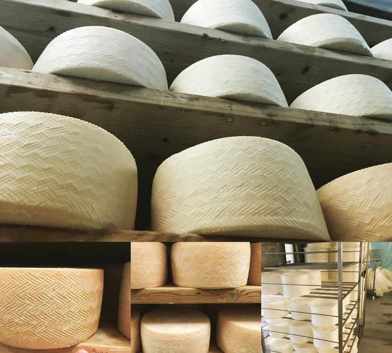 Cheese shop cheese shop cheese factory New France Racine Quebec Ulocal local product local purchase local product