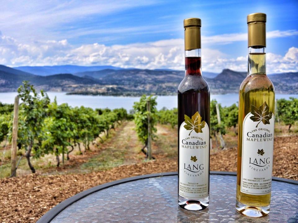 vignoble 2 bouteilles de vin à l'érable sur une table avec vue sur le vignoble et le lac lang vineyards naramata colombie britannique canada ulocal produits locaux achat local produits du terroir locavore touriste