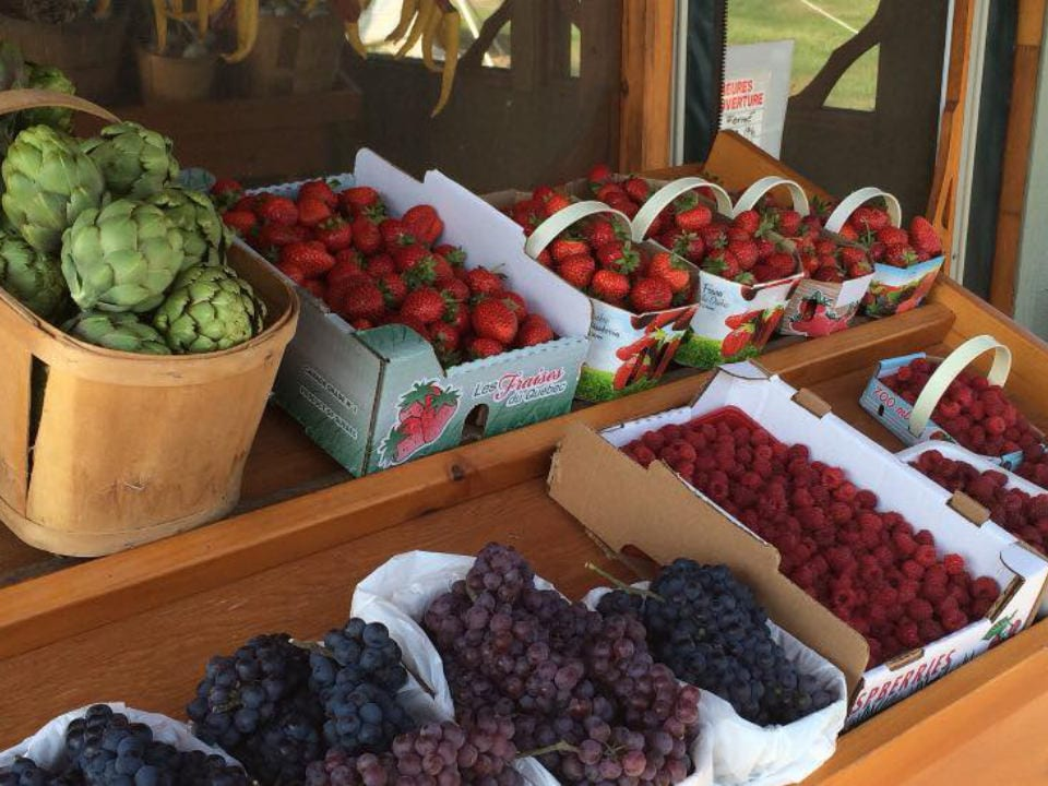 produce picking produce markets kiosk of blue red green grapes with raspberries strawberries and artichoke le frugivore saint-urbain-premier quebec canada ulocal local products local purchase local produce locavore tourist