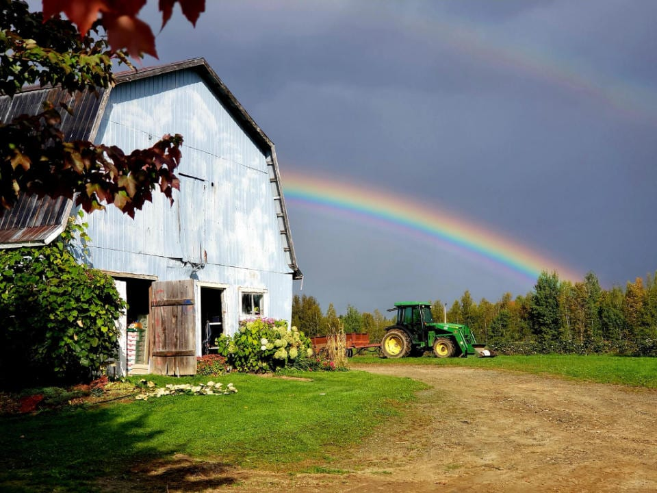 produce picking old barn with green tractor and rainbow in the background in the fields le jardin fruitier sherbrooke quebec canada ulocal local products local purchase local produce locavore tourist