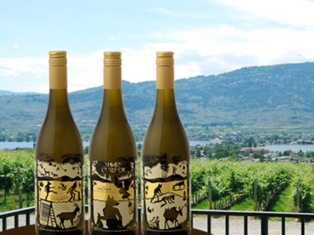 vineyard 3 bottles of white wine with vineyard views moon curser vineyards osoyoos british colombia canada ulocal local products local purchase local produce locavore tourist