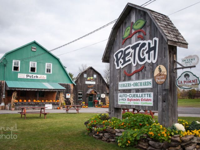 produce picking orchard sign and old farm in old wood and green paint on the front cidrerie et distillerie c.e. petch hemmingford quebec canada ulocal local products local purchase local produce locavore tourist