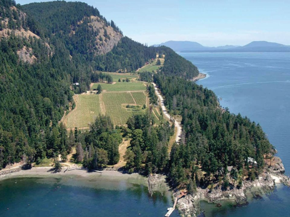 vignoble vue aérienne du vignoble et de la mer sea star estate farm and vineyards pender island colombie britannique canada ulocal produits locaux achat local produits du terroir locavore touriste