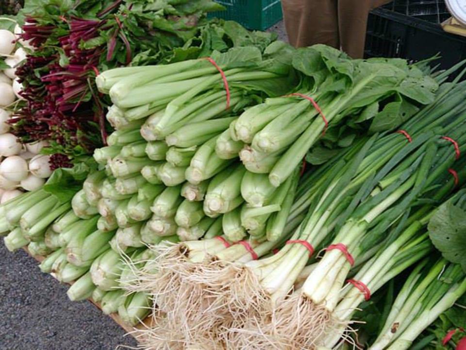 marché public kiosque de légumes locaux tantallon village farmers market upper tantallon nouvelle-écosse canada ulocal produits locaux achat local produits du terroir locavore touriste