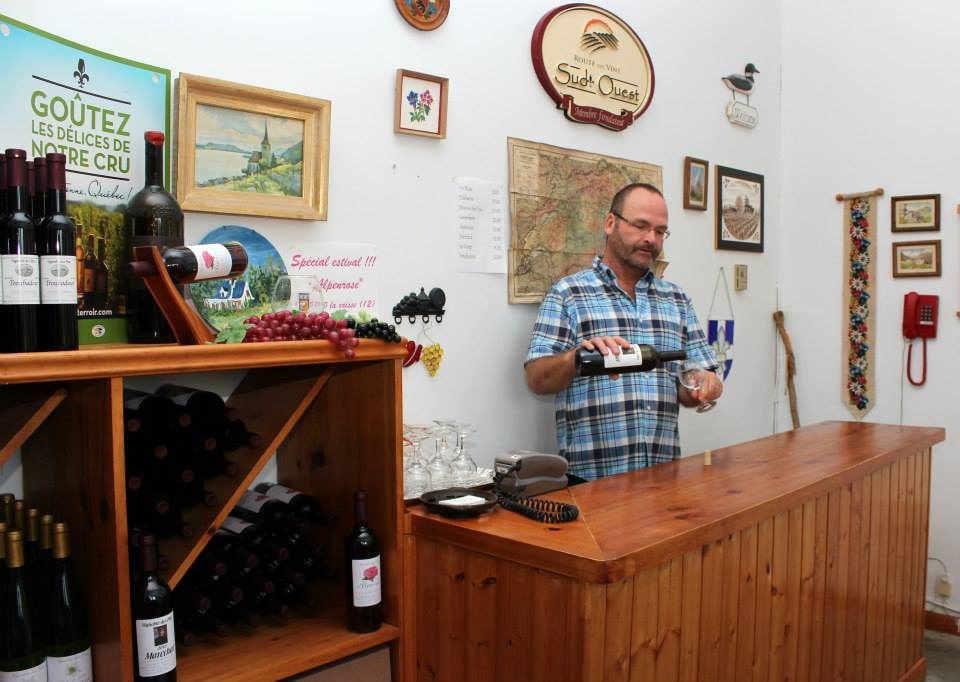 Vignoble alcool alimentation Vignoble des Pins Sabrevois Québec Ulocal produit local achat local produit du terroir