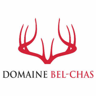 Vineyard Alcohol Vineyard Domaine Bel-Chas Saint-Charles-de-Bellechasse Quebec Ulocal local product local purchase local product