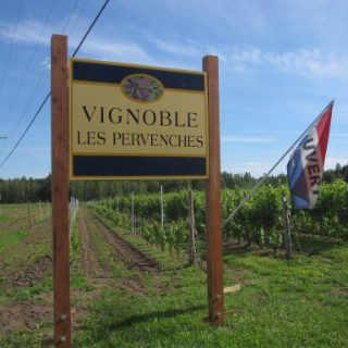 Vignoble vins biologiques Vignoble Les Pervenches Farnham Québec Ulocal produit local achat local produit du terroir