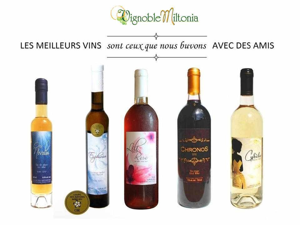 Vignoble alcool alimentation Vignoble Miltonia Sainte-Cécile-de-Milton Québec ulocal produit local achat local produit du terroir