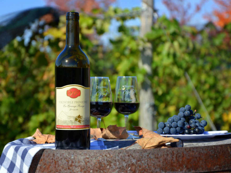 Vignoble alcool alimentation Vignoble Prémont Sainte-Angèle-de-Prémont Québec Ulocal produit local achat local produit du terroir