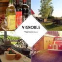 vineyards ecological wines Vineyard Vertefeuille La Prairie Quebec Ulocal local product local purchase local product