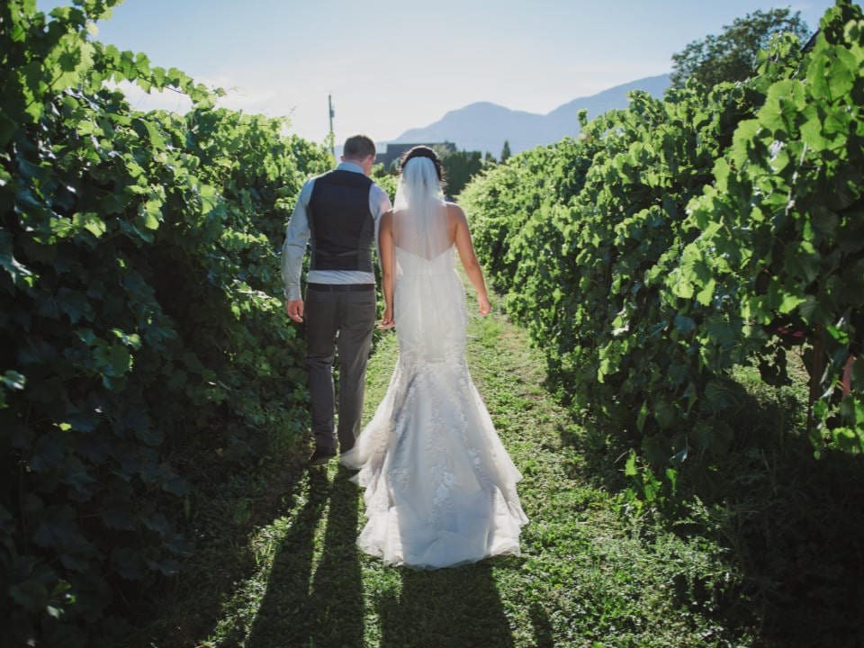 vignoble couple qui se marie qui marche dans l'allée du vignoble willow creek vineyard chilliwack colombie britannique canada ulocal produits locaux achat local produits du terroir locavore touriste