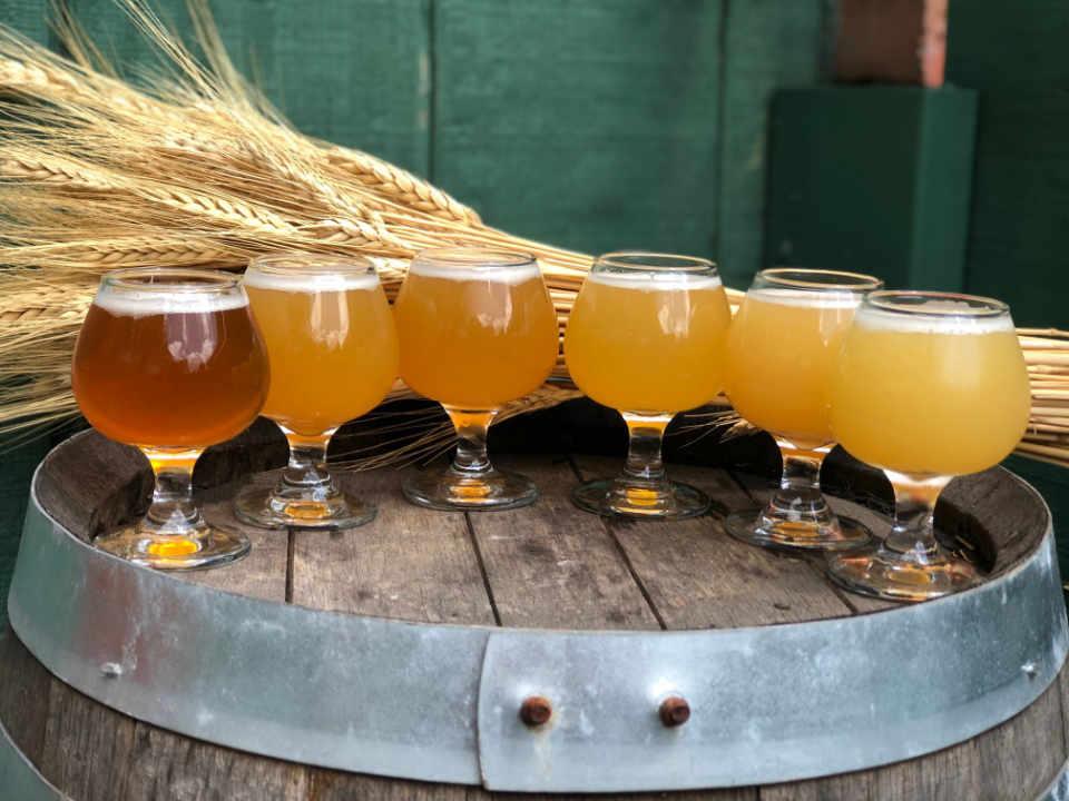 Microbrasserie verres de bière American Fresh Brewhouse Somerville Massachusetts États-Unis Ulocal produit local achat local