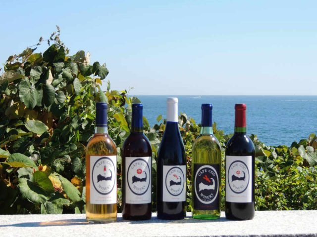 Vineyard wine bottles Cape Cod Winery Teaticket Massachusetts United States Ulocal local product local purchase