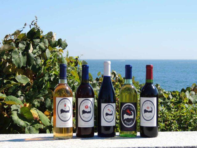 Vignoble bouteilles de vin Cape Cod Winery Teaticket Massachusetts États-Unis Ulocal produit local achat local