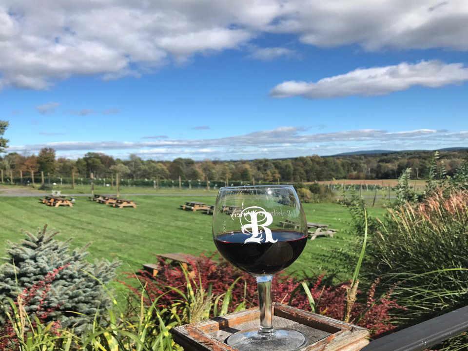 Vineyard Wine glass Robibero Family Vineyards New Paltz New York United States Ulocal Local Product Local Purchase