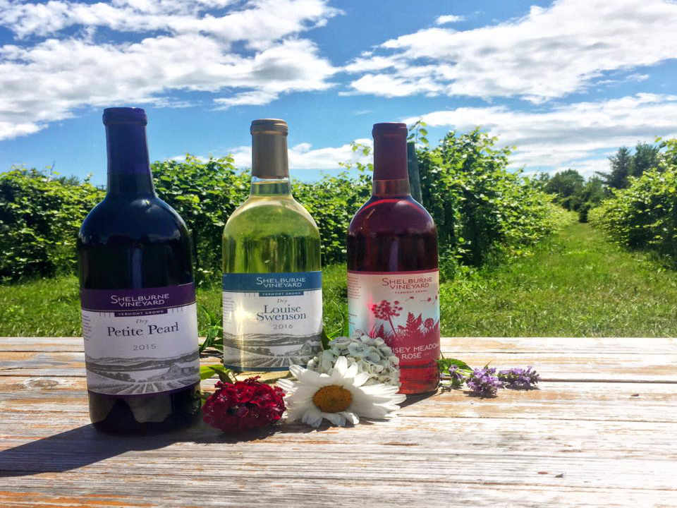 Vineyard Wine Bottles Shelburne Vineyard Shelburne Vermont USA Ulocal Local Product Local Purchase