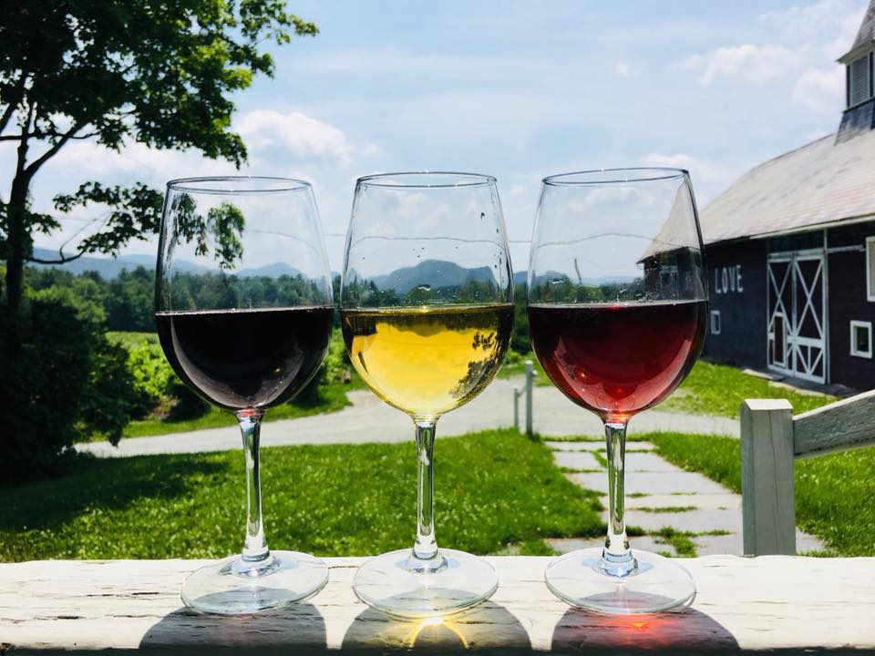 Vignoble verres de vin Whaleback Vineyard Poultney Vermont États-Unis Ulocal produit local achat local