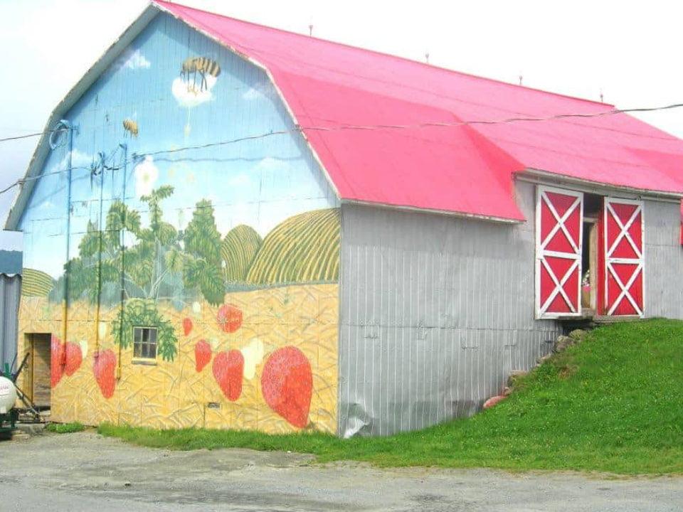 autocueillette grange avec toit rouge et murale de petits fruits sur le côté de la ferme fruitière mario nadeau thetford mines québec canada ulocal produits locaux achat local produits du terroir locavore touriste