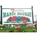 produce picking logo fruitière mario nadeau thetford mines quebec canada ulocal local products local purchase local produce locavore tourist