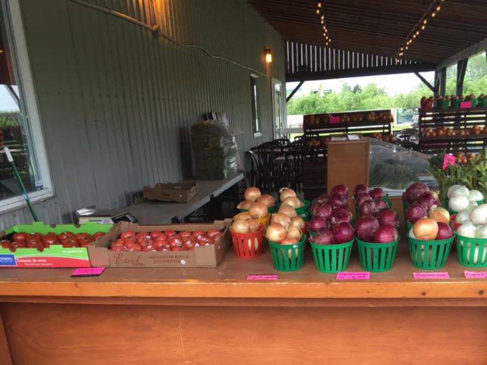 produce picking covered outside kiosk fruits and vegetables from the farm le potager mont-rouge halte gourmande rougemont quebec canada ulocal local products local purchase local produce locavore tourist